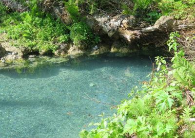 Grotte im Liard Hot Spring