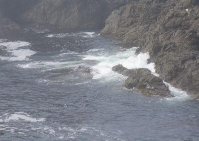 Küste von Ucluelet