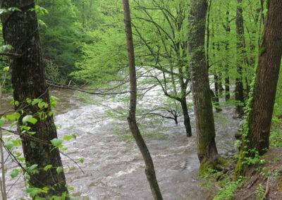 Hochwasser im Smoky NP