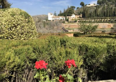 General Life Granada